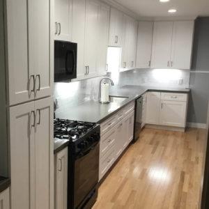 Austin Kitchen Remodel Galley L